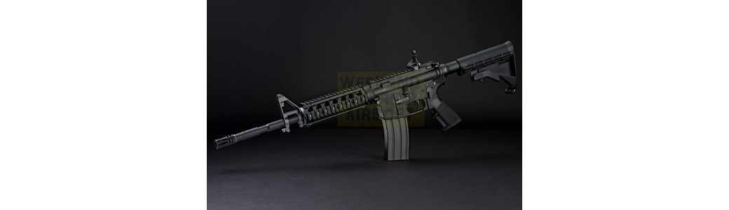 ARES SR25